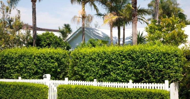 Artificial garden fence screening