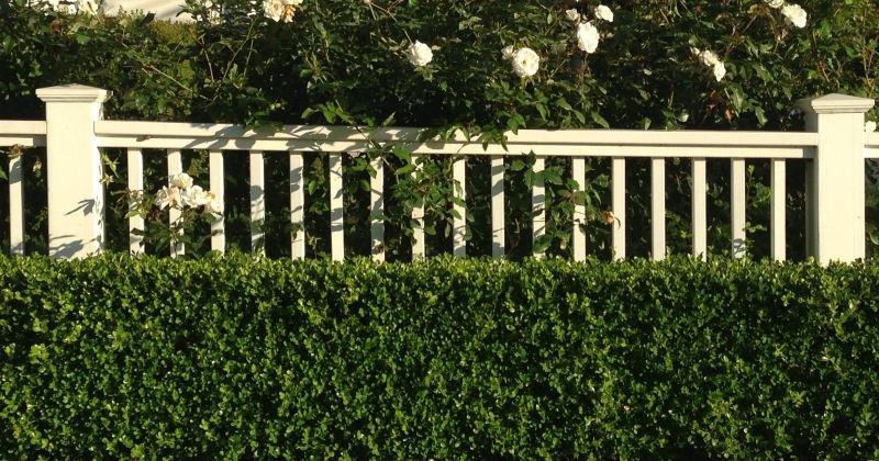 Artificial garden hedge screening