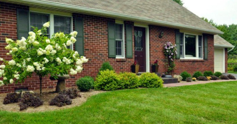 Basics of front yard landscaping