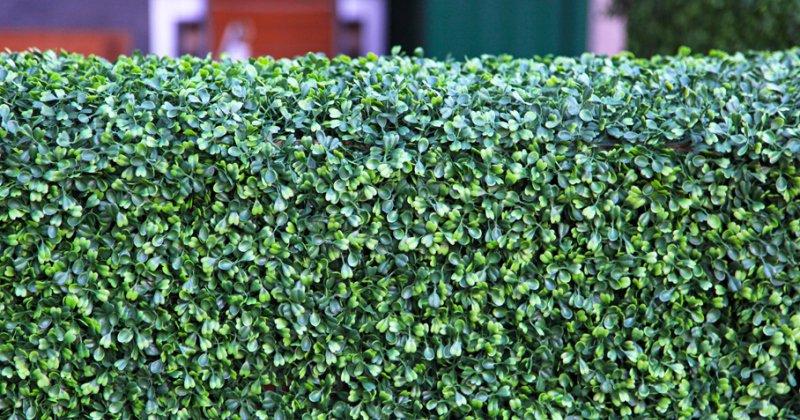 Cheap artificial garden screening