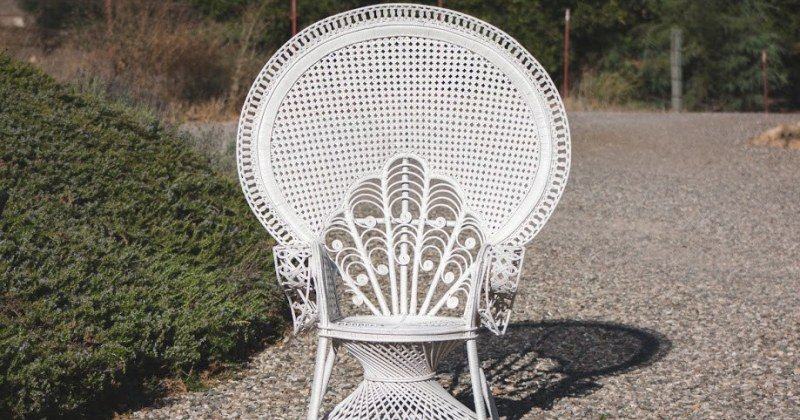 Cheap white peacock chair