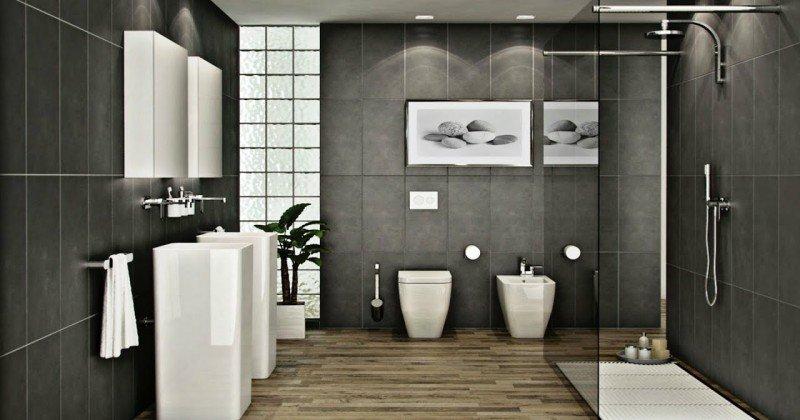 Modern shower design pictures
