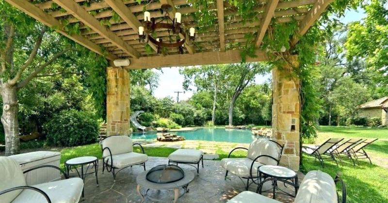 Tropical outdoor patio plants