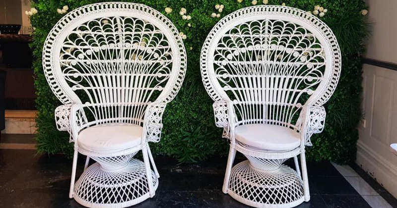 White peacock chair buy