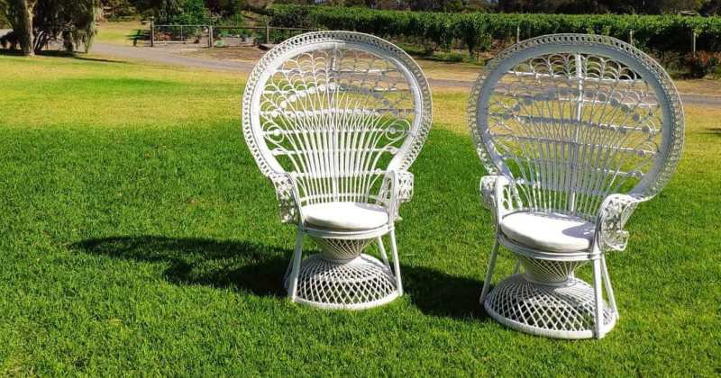 White peacock chair hire melbourne