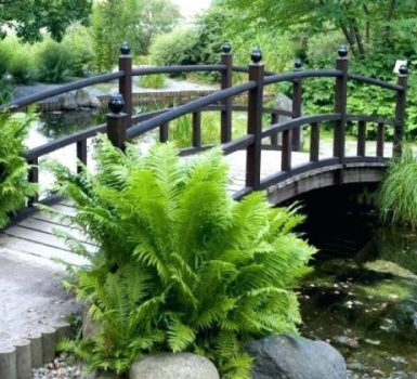 Wooden Garden Bridge Designs