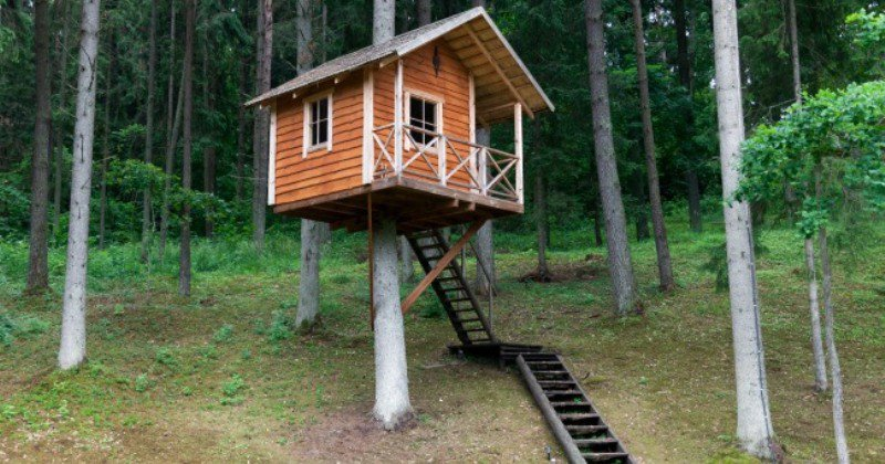 Awesome Kids Tree Houses