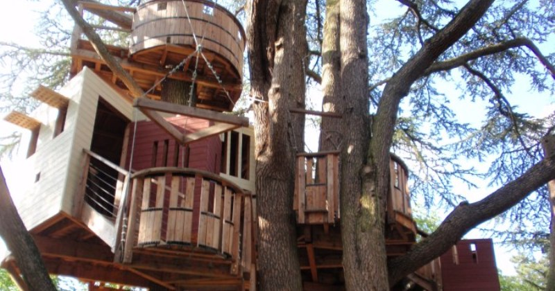 Cheap Tree house ideas