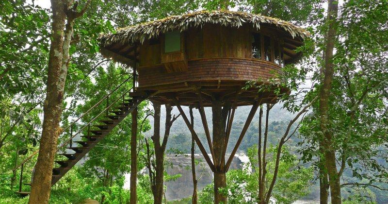 Diy tree house design
