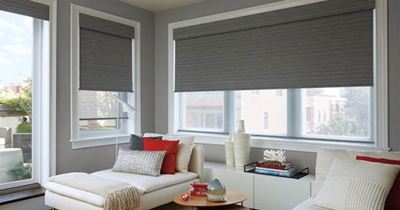 Gray roller shades home