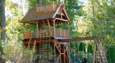 Kids Tree House Design