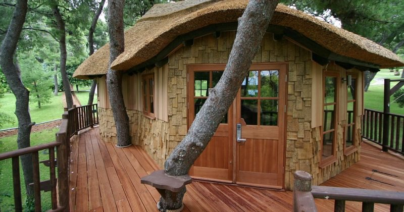 Luxury tree house for sale