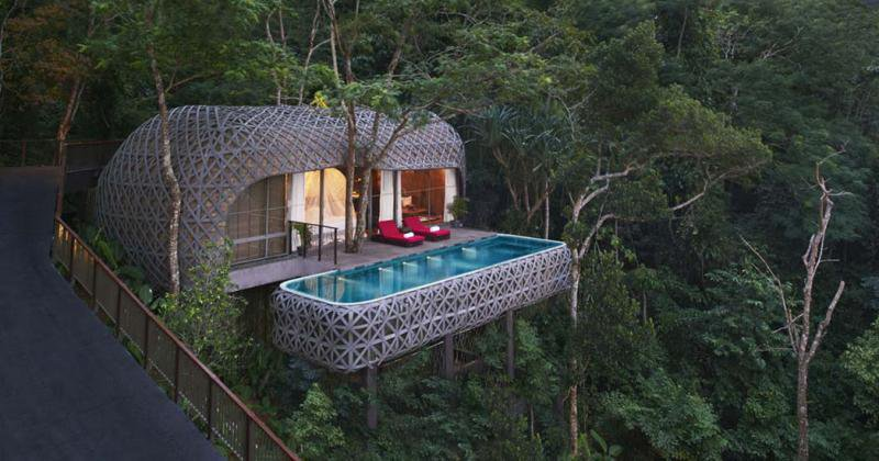 Luxury tree house hotels