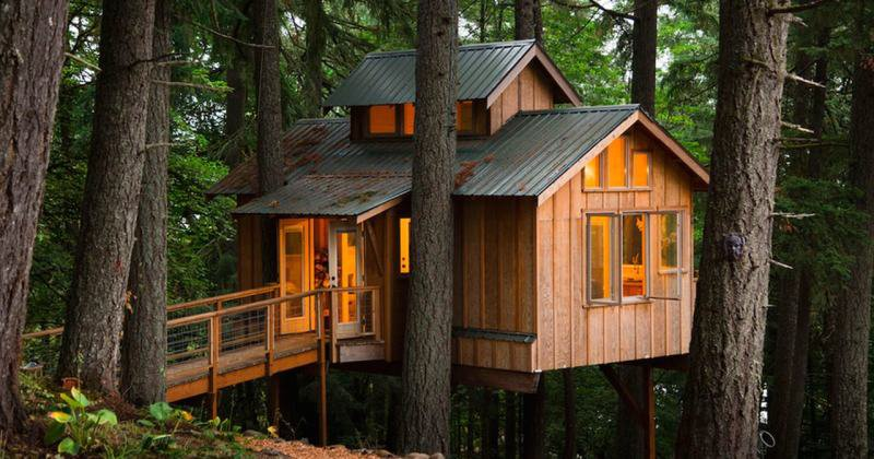 Luxury tree house near me