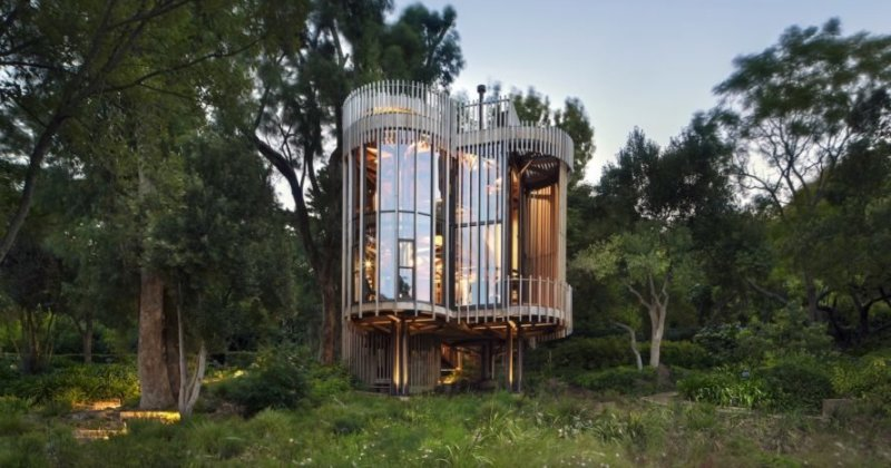 Luxury tree house pictures
