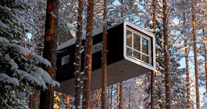 Luxury tree house rentals