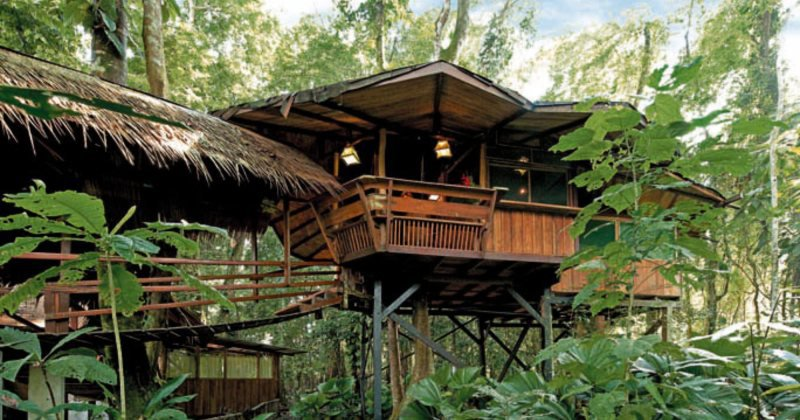 Luxury tree house resort costa rica