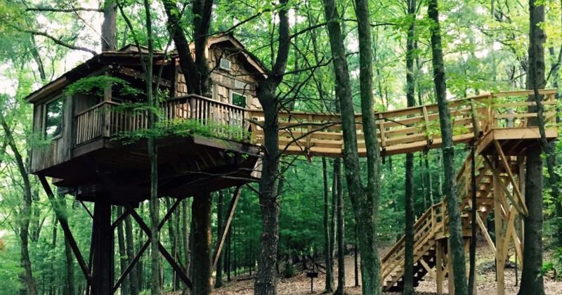 Luxury tree house west virginia