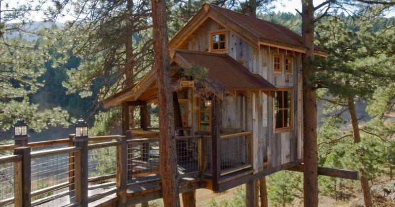 Rustic tree house ideas