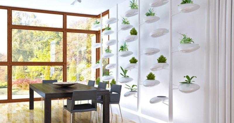 Small kitchen garden design