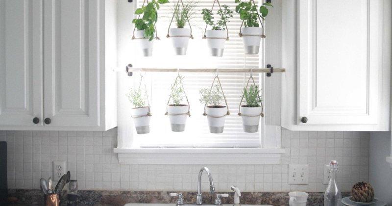 Small kitchen garden layout