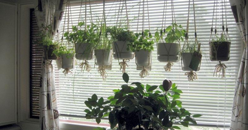 Small kitchen garden window