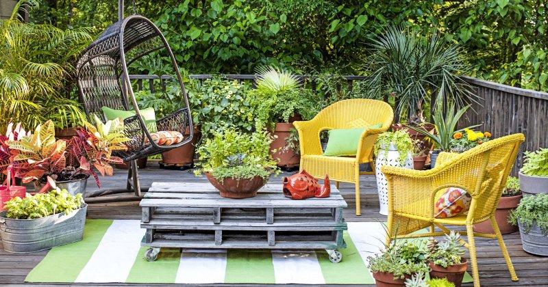 Small terrace garden design ideas