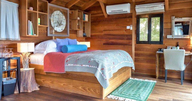 Tree house bed ideas