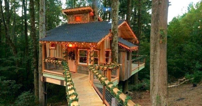 Tree house design simple
