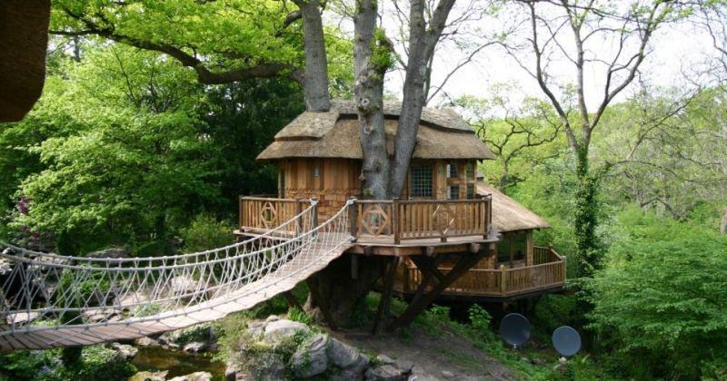 Tree house designs uk