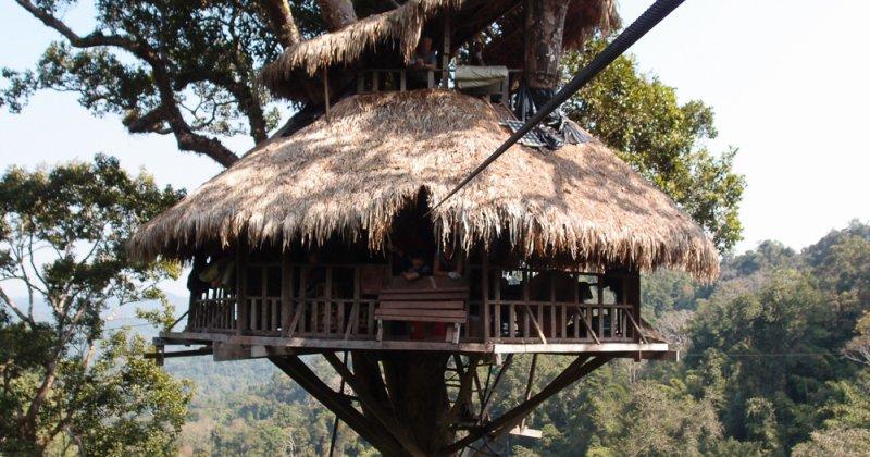 Tree house ideas diy ideas