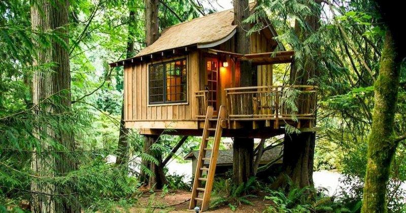 Tree house ideas diy