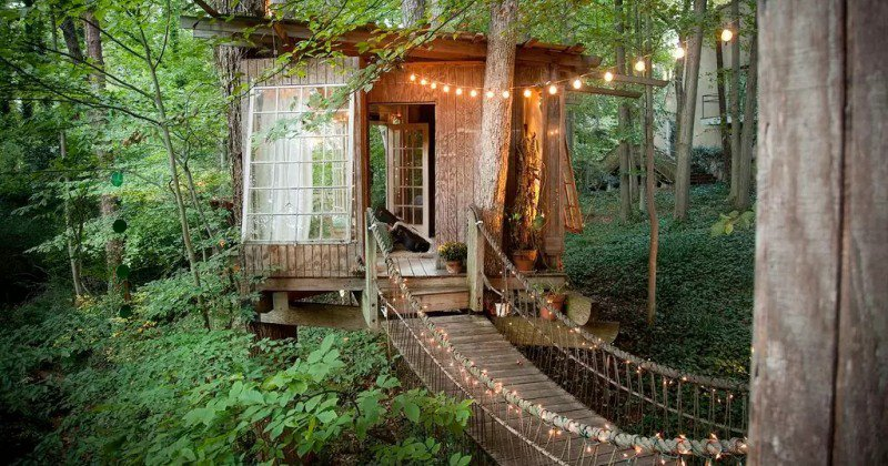 Tree house ideas images