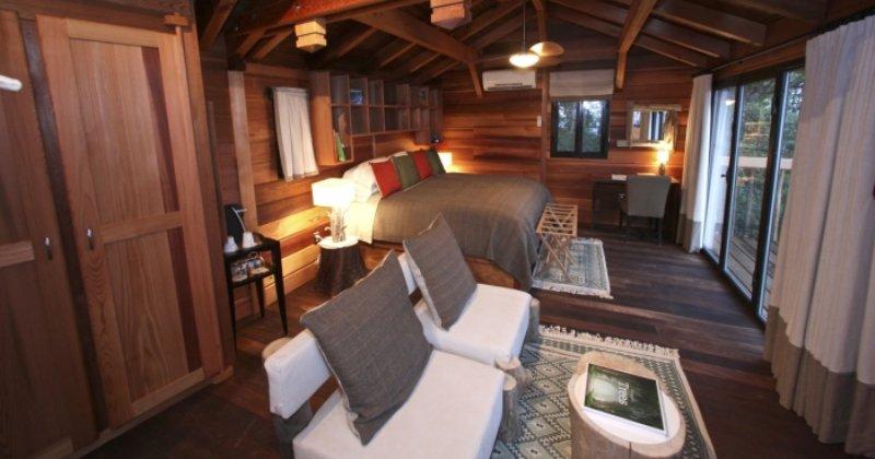 Treehouse furniture ideas