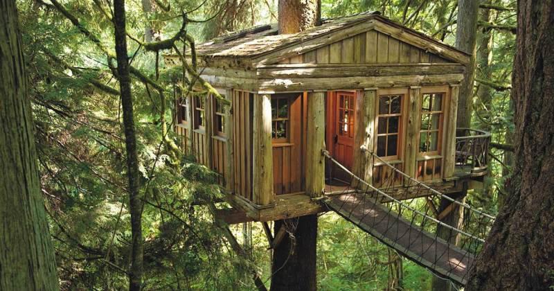 Treehouse master design