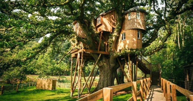 Treehouse stair ideas