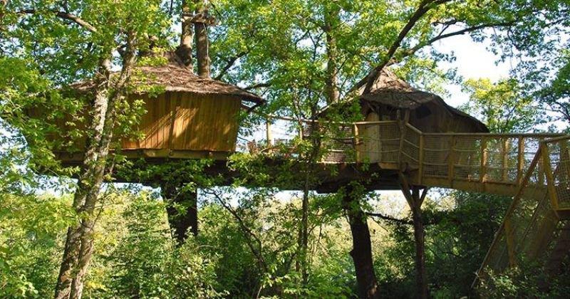 Two tree treehouse ideas