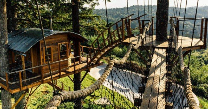 Unique tree house ideas