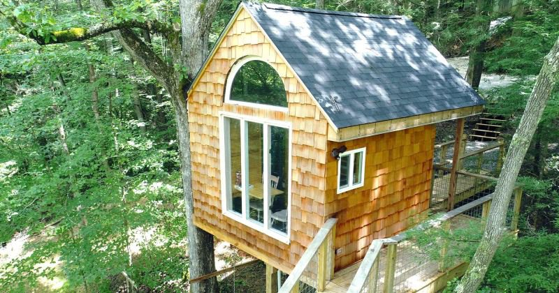 children's tree house lexington ky