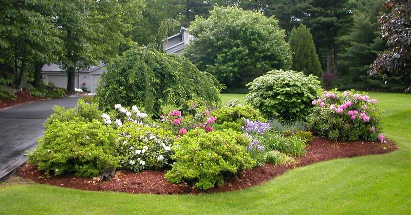 Beautiful landscape design ideas